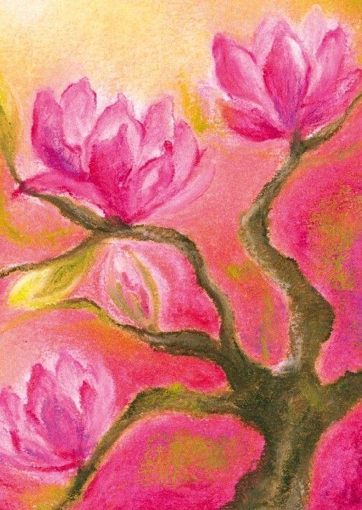B1000 Magnolia