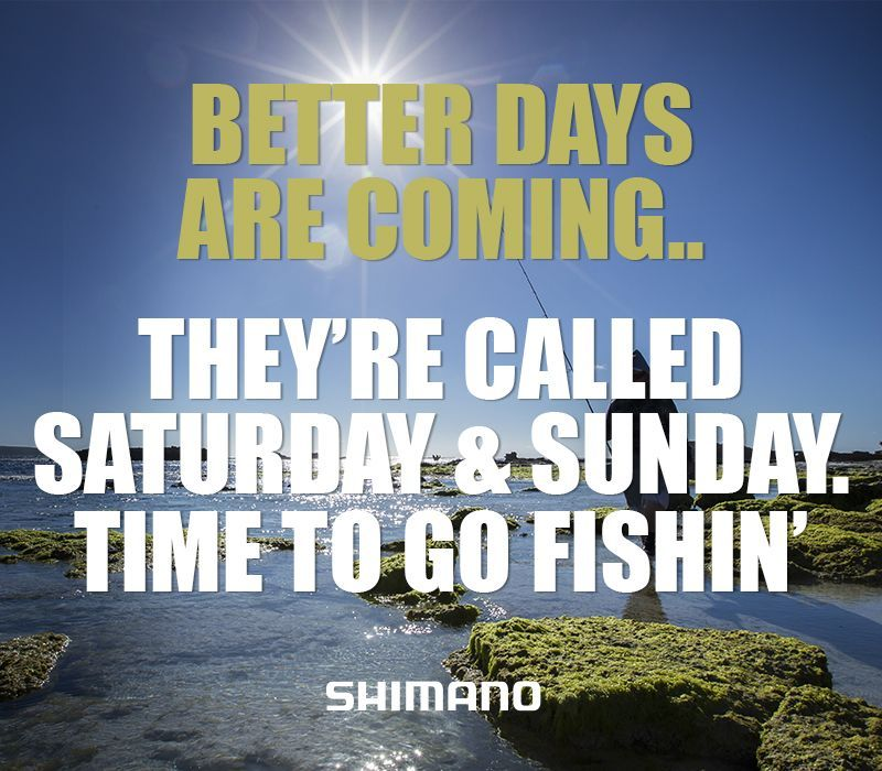 Better Days Are Coming They Are Called Saturday And Sunday Time To Go Fishing Fishing Funny Meme Fishing Quotes Fishing Memes Fishing Humor