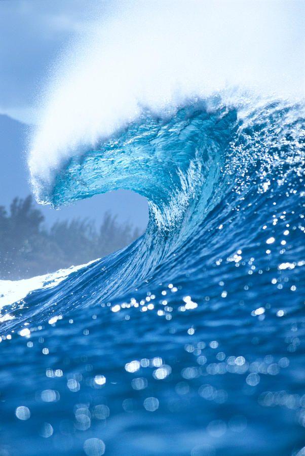 Spray And Curl De Golf Oceaangolven Landschappen