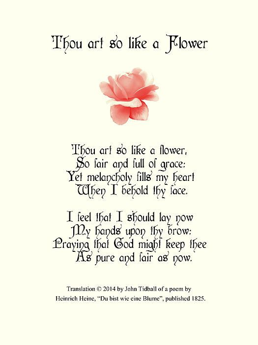 Thou Art So Like A Flower by Bishopston Fine Art | Poems, Flowers ...
