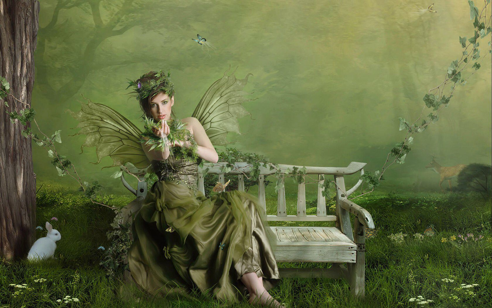 Image from httpdarkpozadiaimageswallpapers24835556fairy nymphs voltagebd Choice Image