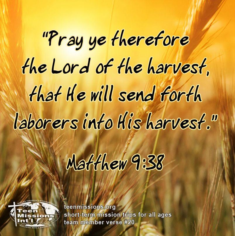 Teen Missions International—Bible Verse –Matthew 9:38