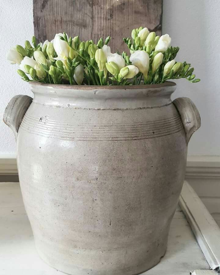 Pin Van Julia F Op Jardin Arreglos Y Exteriores Bloemstukken Bloemendecoraties Decoraties