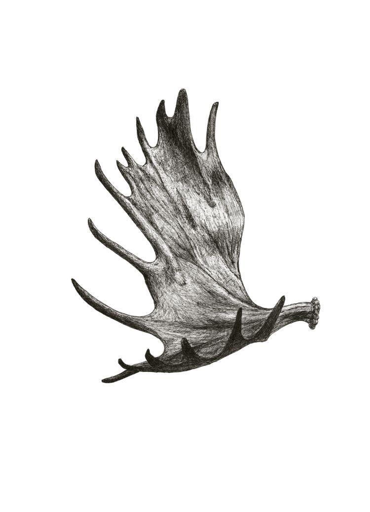 Moose Antler Tattoo : moose, antler, tattoo, Moose, Antler, Tattoo,, Tattoos,, Hunting, Tattoos