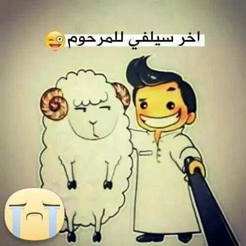 صور تهنئة عيد الأضحى المبارك 2019 للفيسبوك والواتساب فوتوجرافر Arabic Funny Funny Arabic Quotes Ramadan Quotes