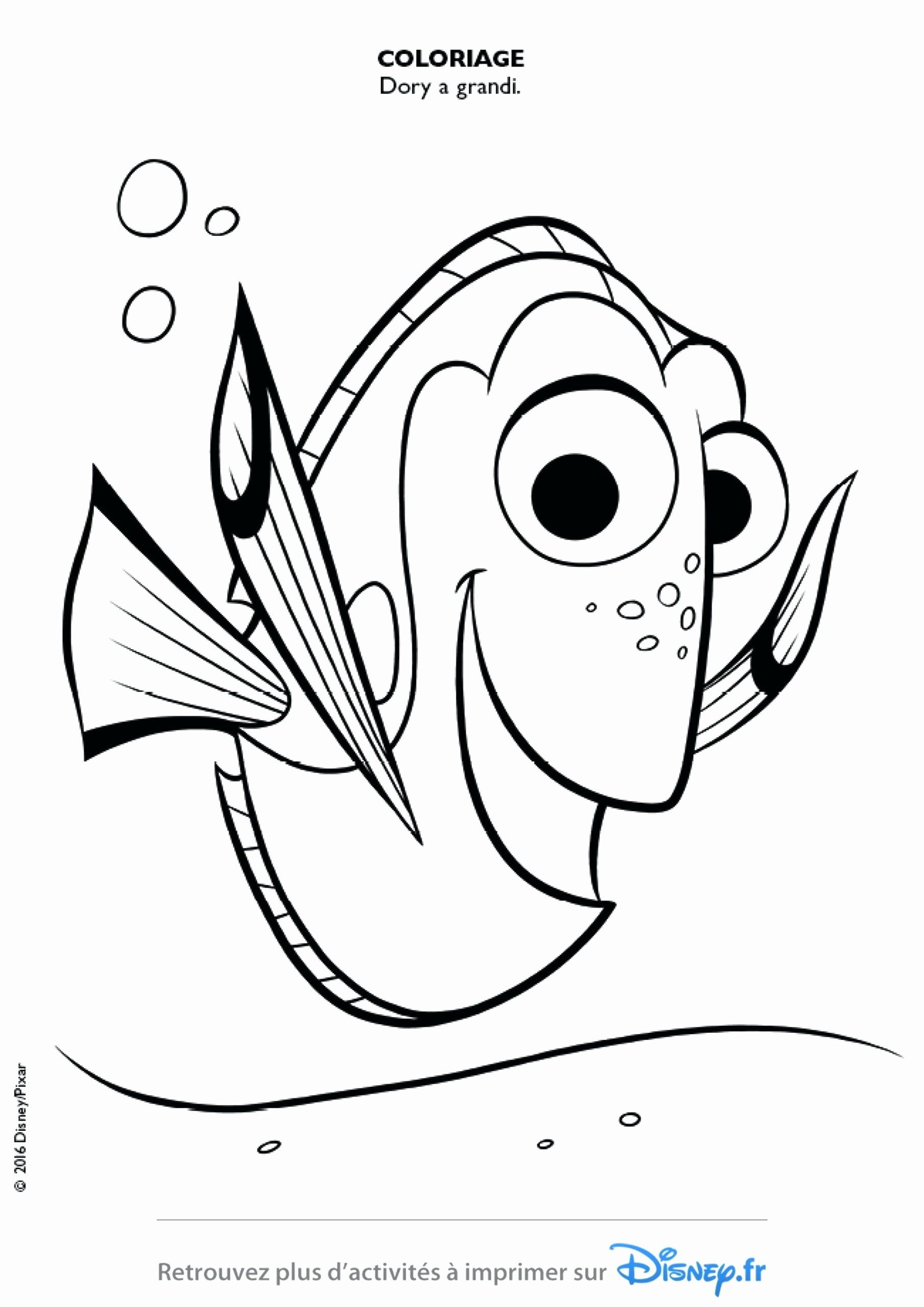 Finding Dory Coloring Book Fresh Top 28 Top Notch Ejykymg Finding Nemo Coloring Pages Do Nemo Coloring Pages Cartoon Coloring Pages Finding Nemo Coloring Pages