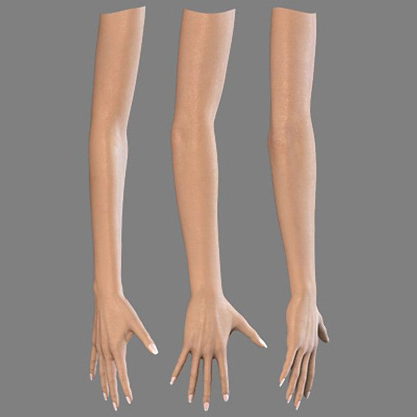Female Hand Arm 3d Model Female Hand And Arm By Arne Kaupang