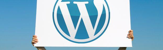 Dienst: WordPress advies en ondersteuning