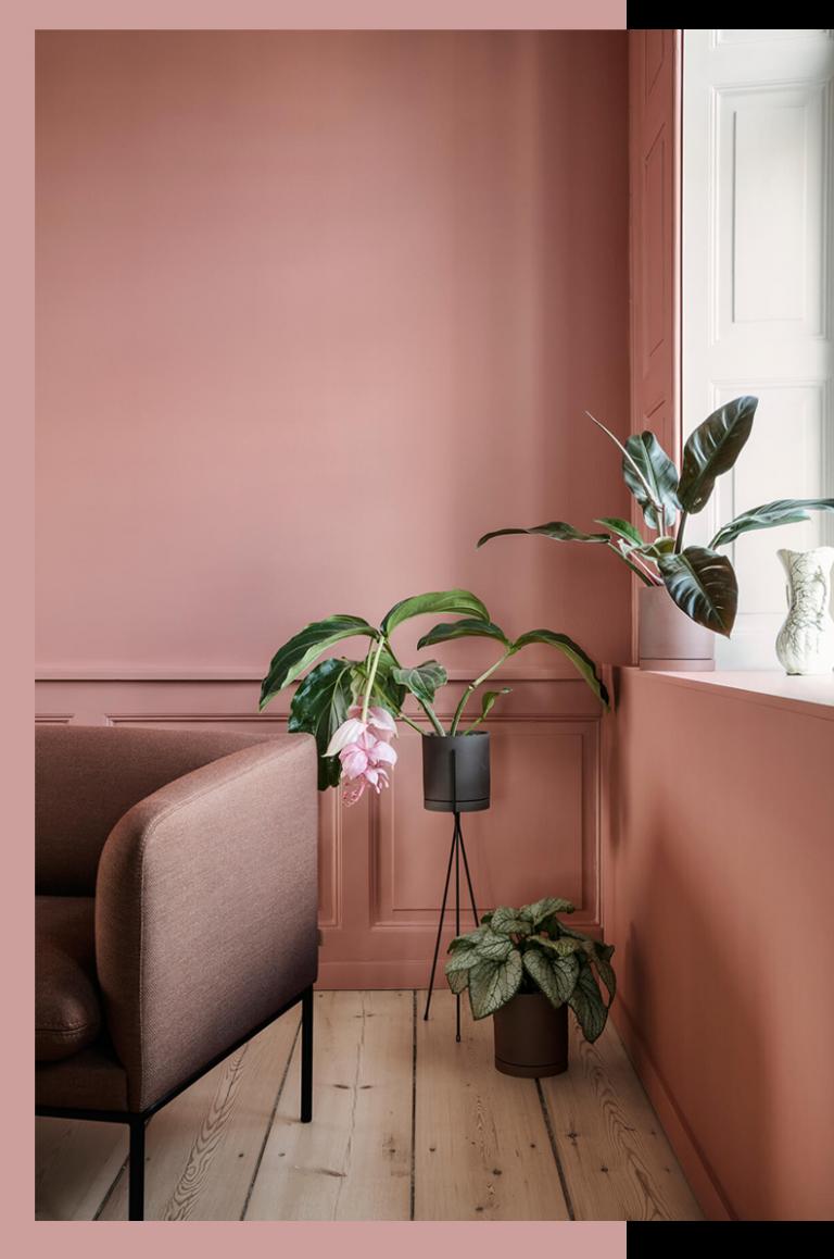 Couleur Mur Salon 2019 terra cotta, blush & co | couleur mur salon, deco rose, déco