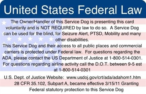 Service Dog Certificate Printable Full Color Easy To Read
