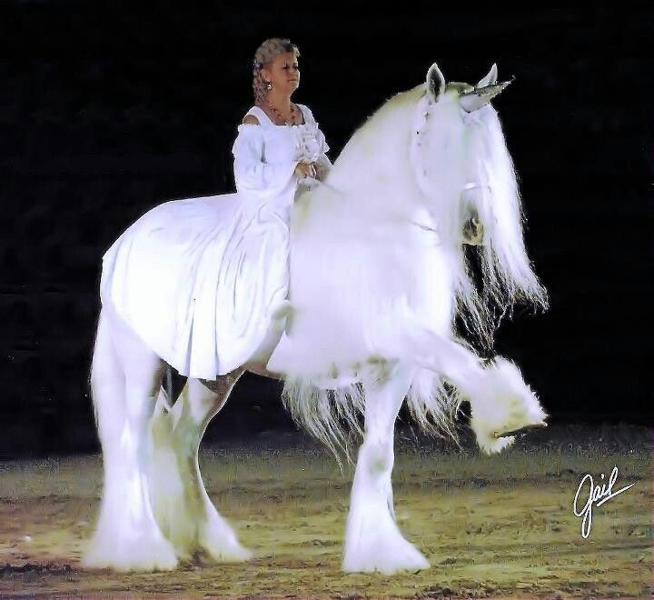 White Shire Stallion Illusion Crystal