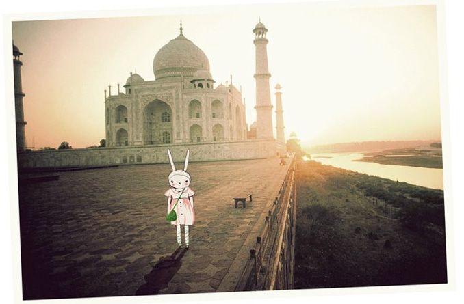 Fifi Lapin wears Eley Kishimoto at the Taj Mahal