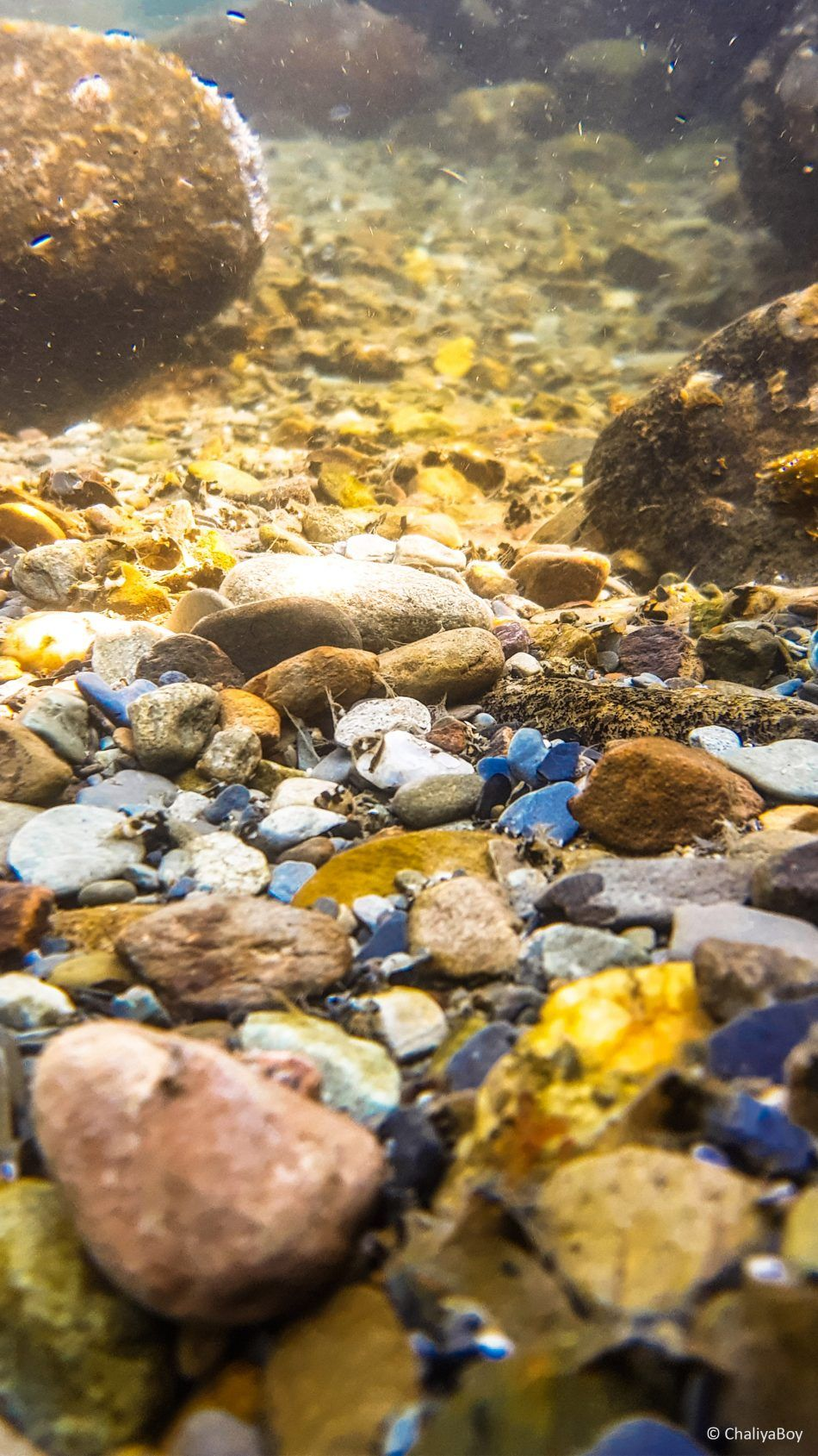 River Stones Under Water Photo Click 4k Ultra Hd Mobile Wallpaper River Stones Photography Wallpaper Water Photography