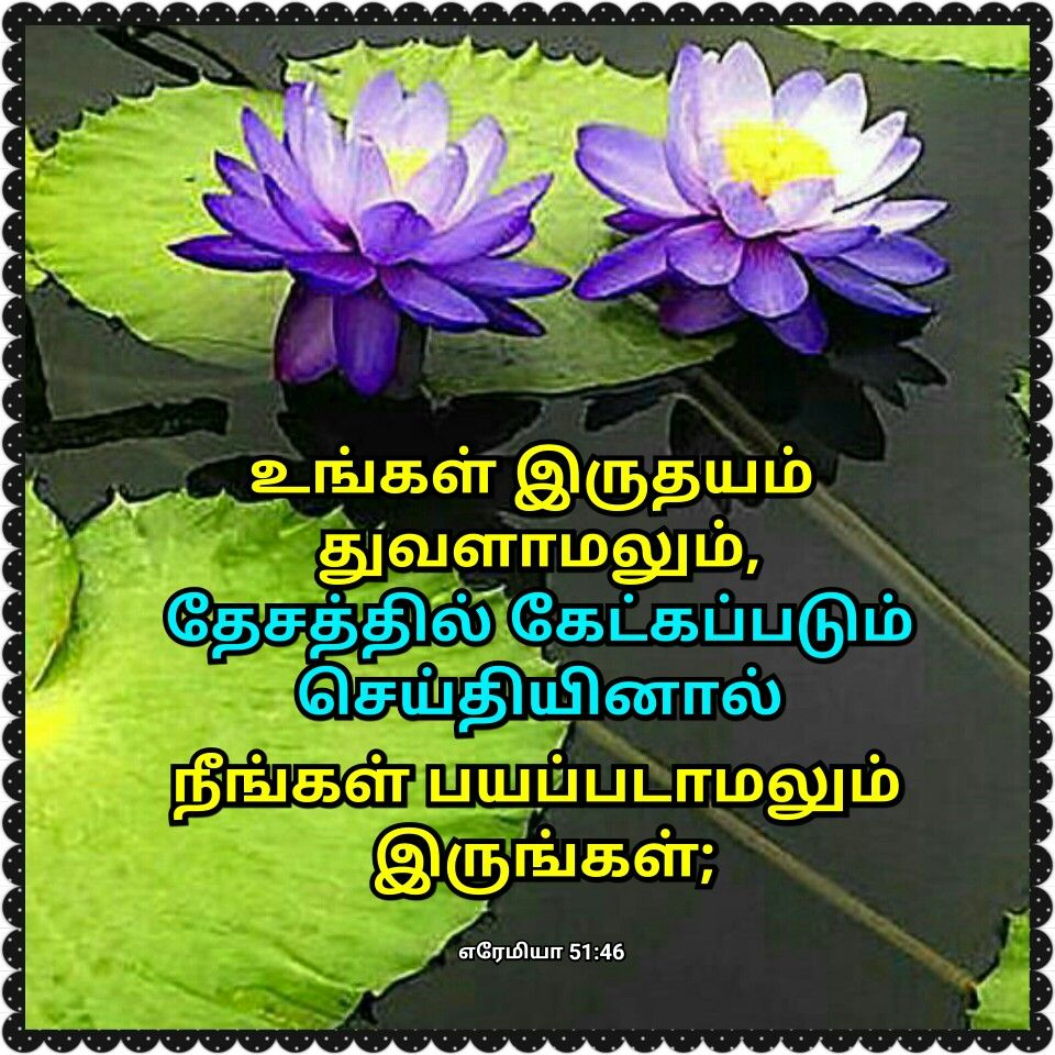Pin by malar tr on bible verses with images in tamil pinterest find this pin and more on bible verses with images in tamil by malartr izmirmasajfo