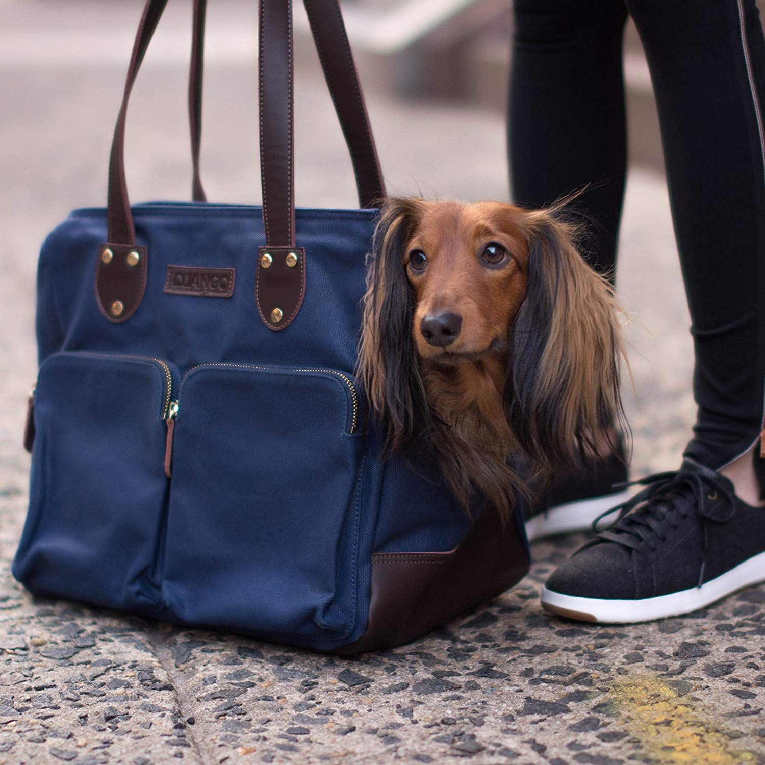 Dachshund Accessories For Dogs Dachshund Central Dog Carrier Bag Dachshund Accessories Puppy Bag