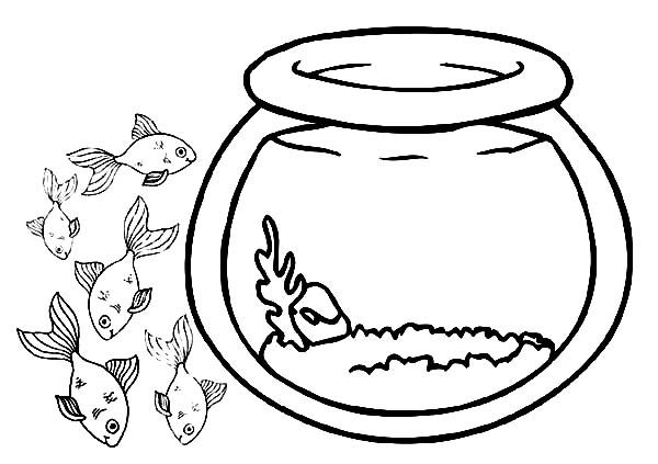 Fish Bowl School Of Fish Outside Fish Bowl Coloring Page Bee Coloring Pages Online Coloring Pages Coloring Pages