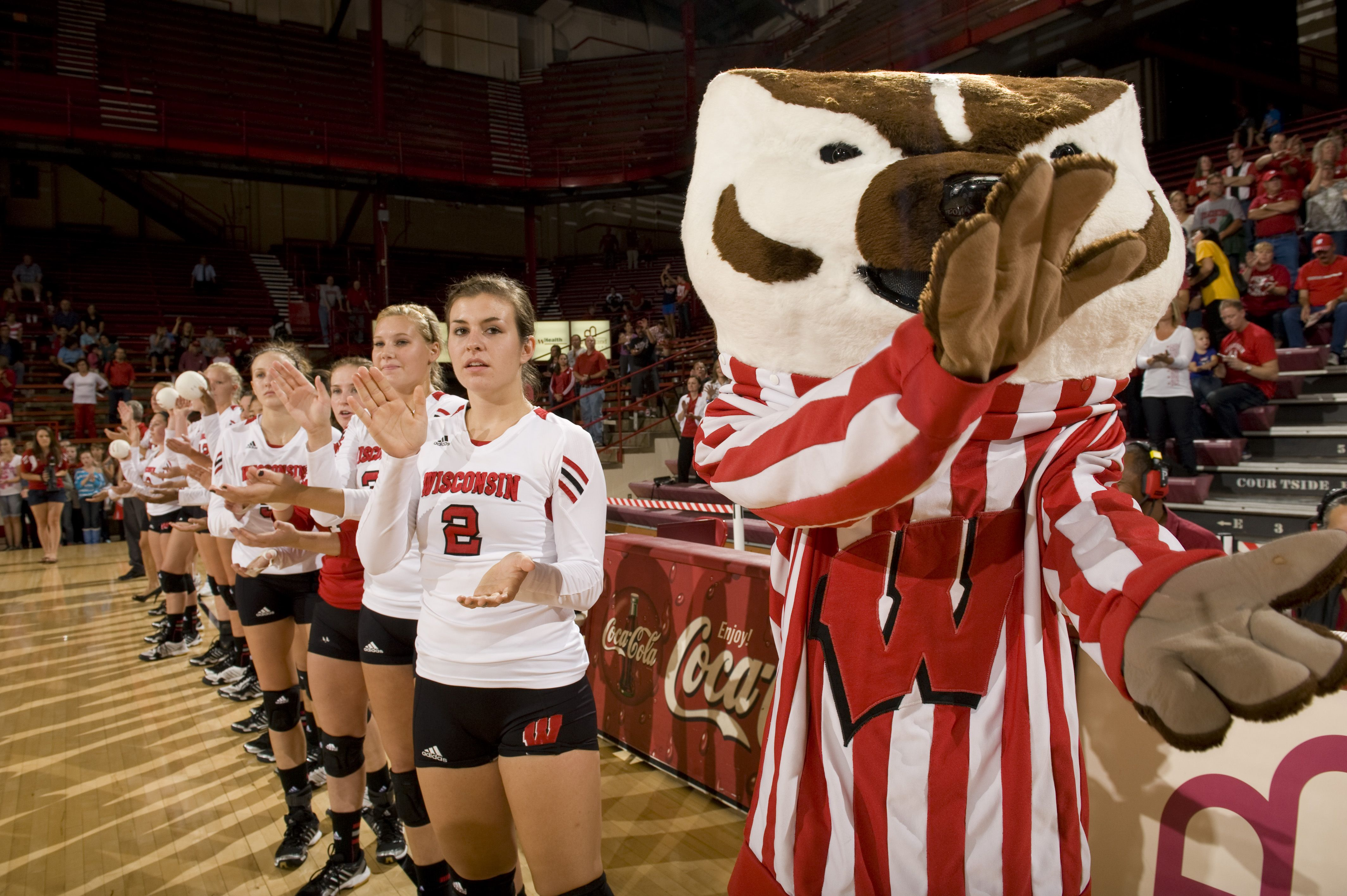 Bucky Leads The Team In Welcoming Its Opponent During Introductions At The Field House Badger Volleyball Wisconsin Badgers University Of Wisconsin