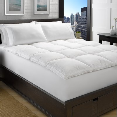 Arsuite Geib Goose Bed 2 Down Feather Mattress Topper Wayfair Feather Mattress Mattress Bed Sizes