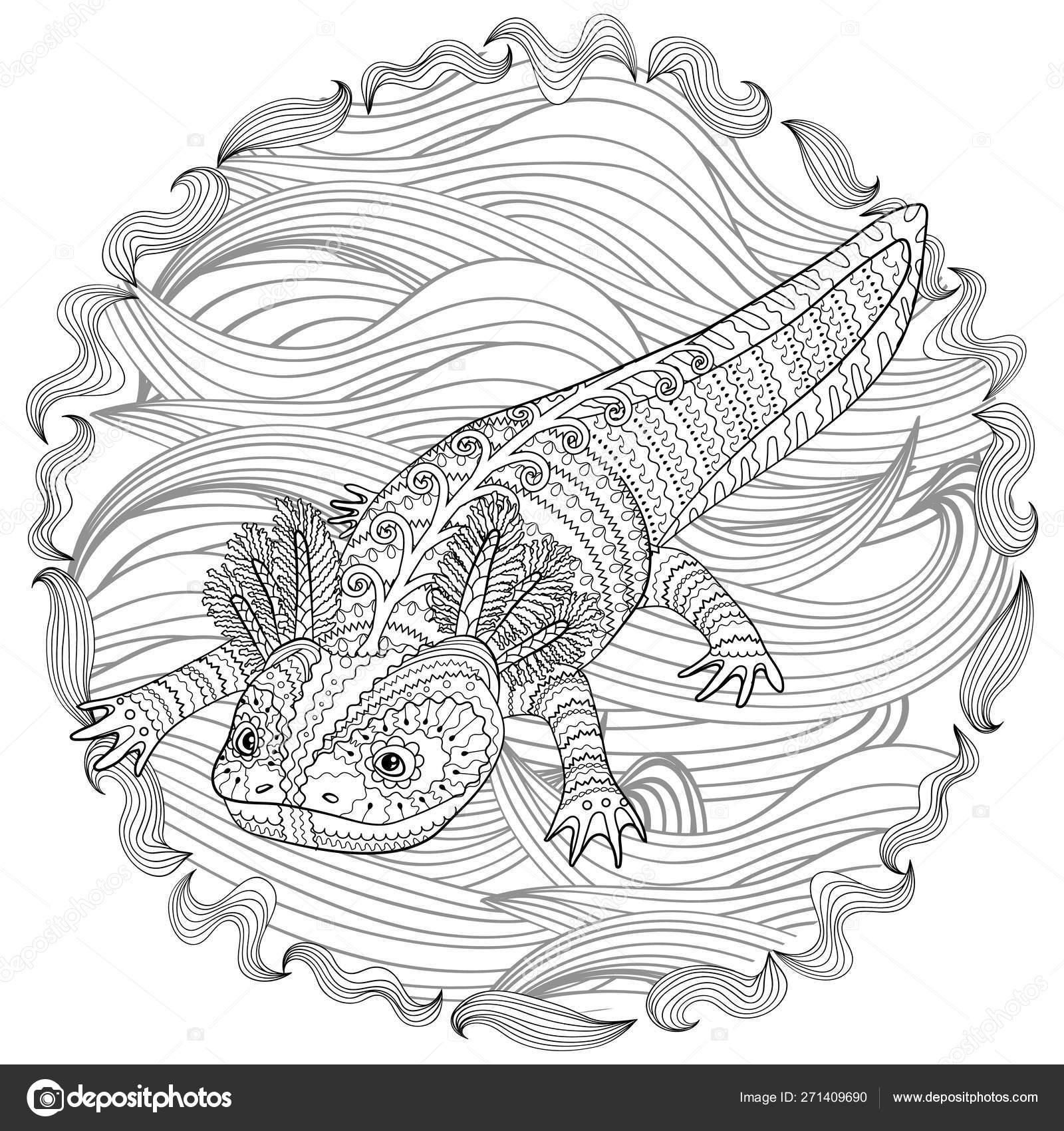 38 Axolotl Coloring Page Coloring Pages Printable Coloring Color