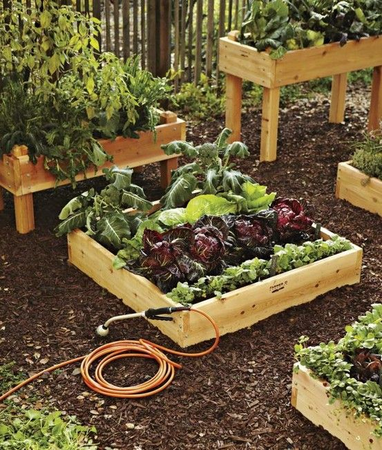 raised vegetable garden beds - Raised Vegetable Garden Ideas And Designs