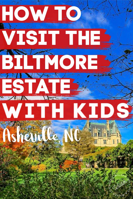 Asheville's 1 Family Spot in 2020 Family friendly
