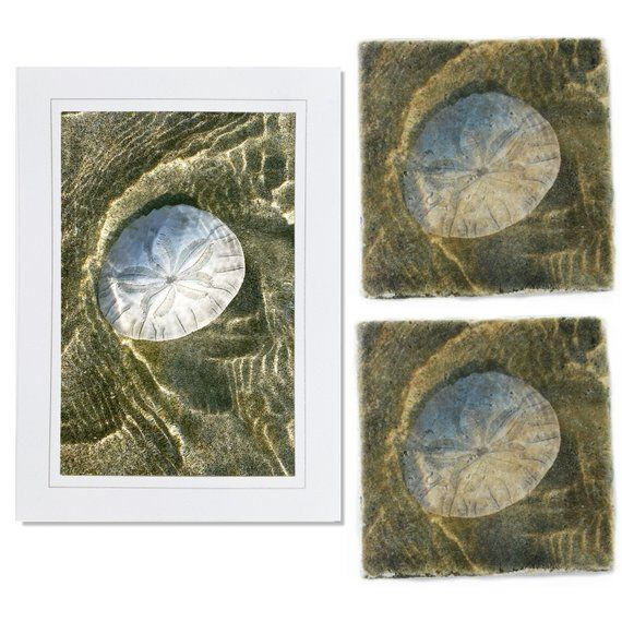 Wedding Gift Ideas For Coworkers: Gifts Under 25 Ready To Ship Gold Sand Dollar Coaster Card