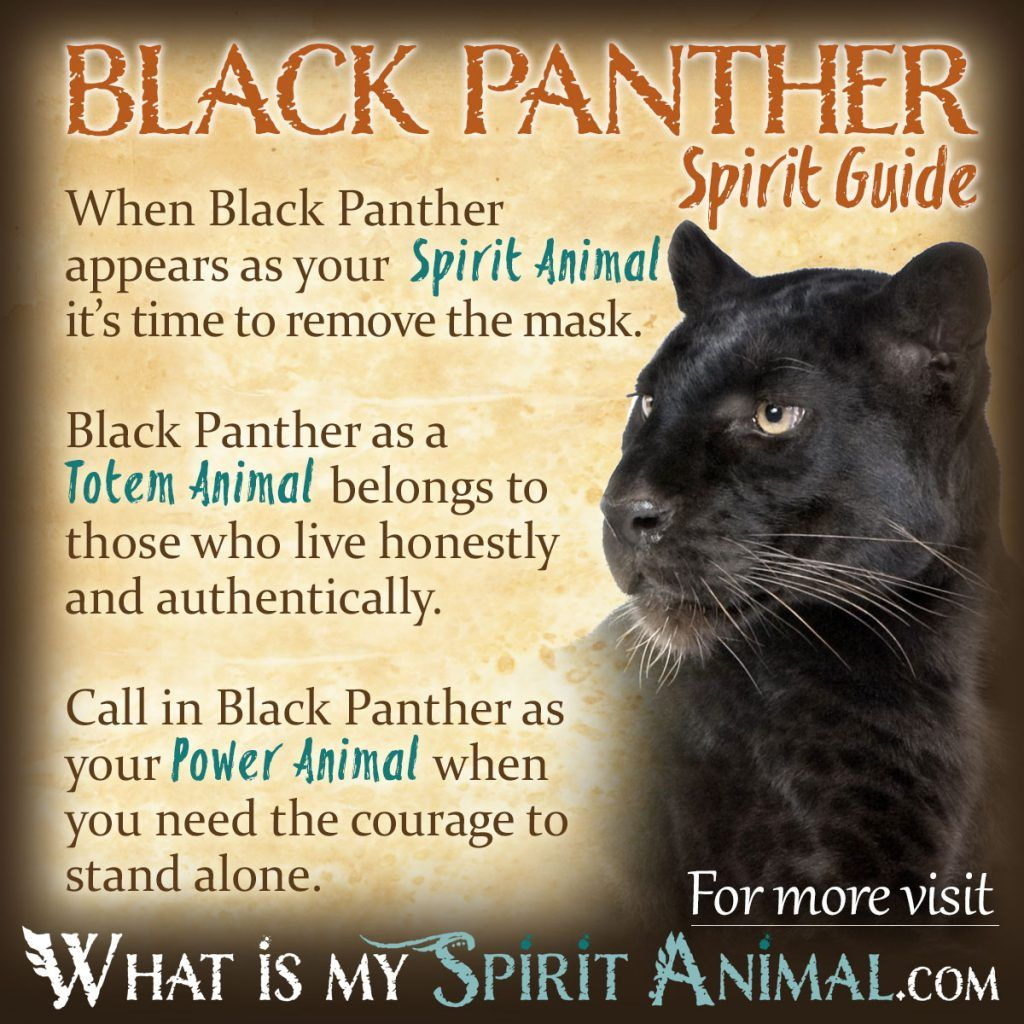 Black Panther Symbolism & Meaning Power animal, Black