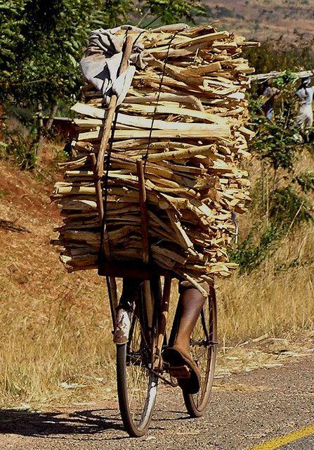 Carrying Heavy Loads 5 Bicycle Bike Cargo Bike