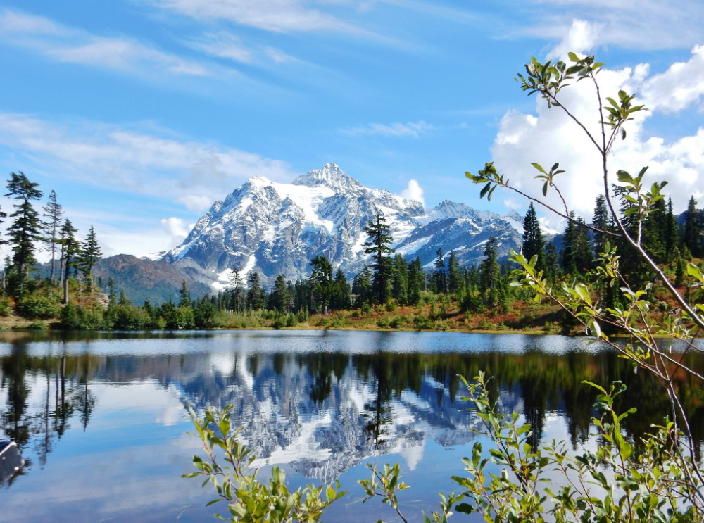 Picture Lake with Mount Shuksan reflecting on a crystal