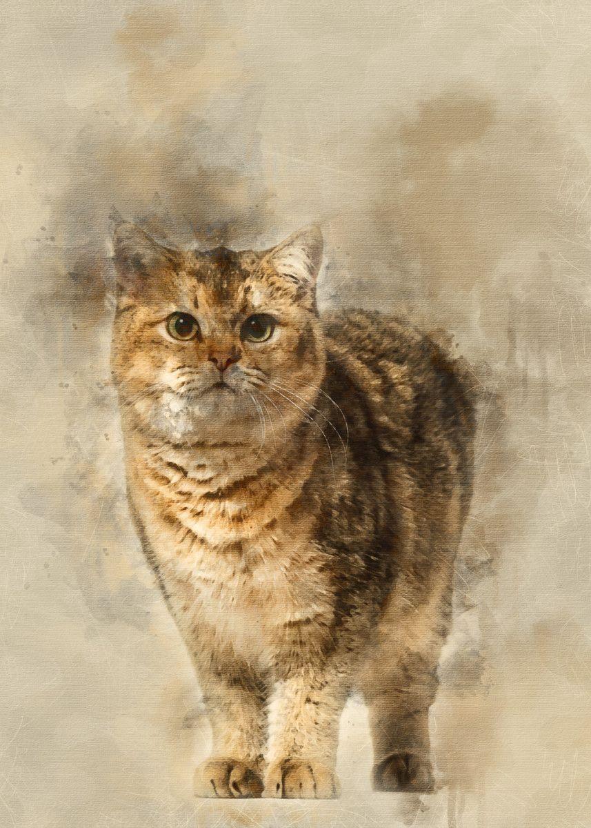 British Shorthair Cat Agai Animals Poster Print Metal Posters In 2020 British Shorthair Cats Animal Posters British Shorthair
