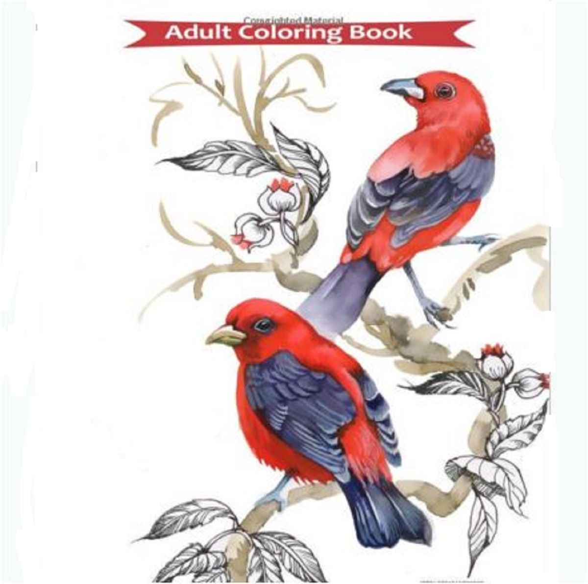 Adult Coloring Book Birds Flower Design Stress Relief Patterns Fun ...
