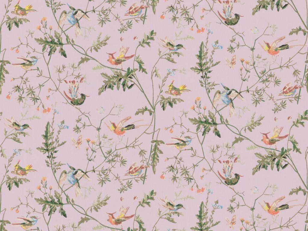 Cole & Son Hummingbirds Lilac Wallpaper Fabric