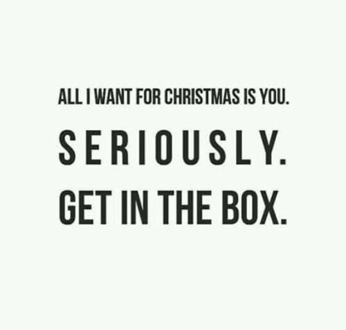 All I Want For Christmas Is You Seriously Get In The Box Christmas Quotes Funny Christmas Quotes For Friends Friends Quotes