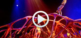 spectacle anniversaire cirque du soleil