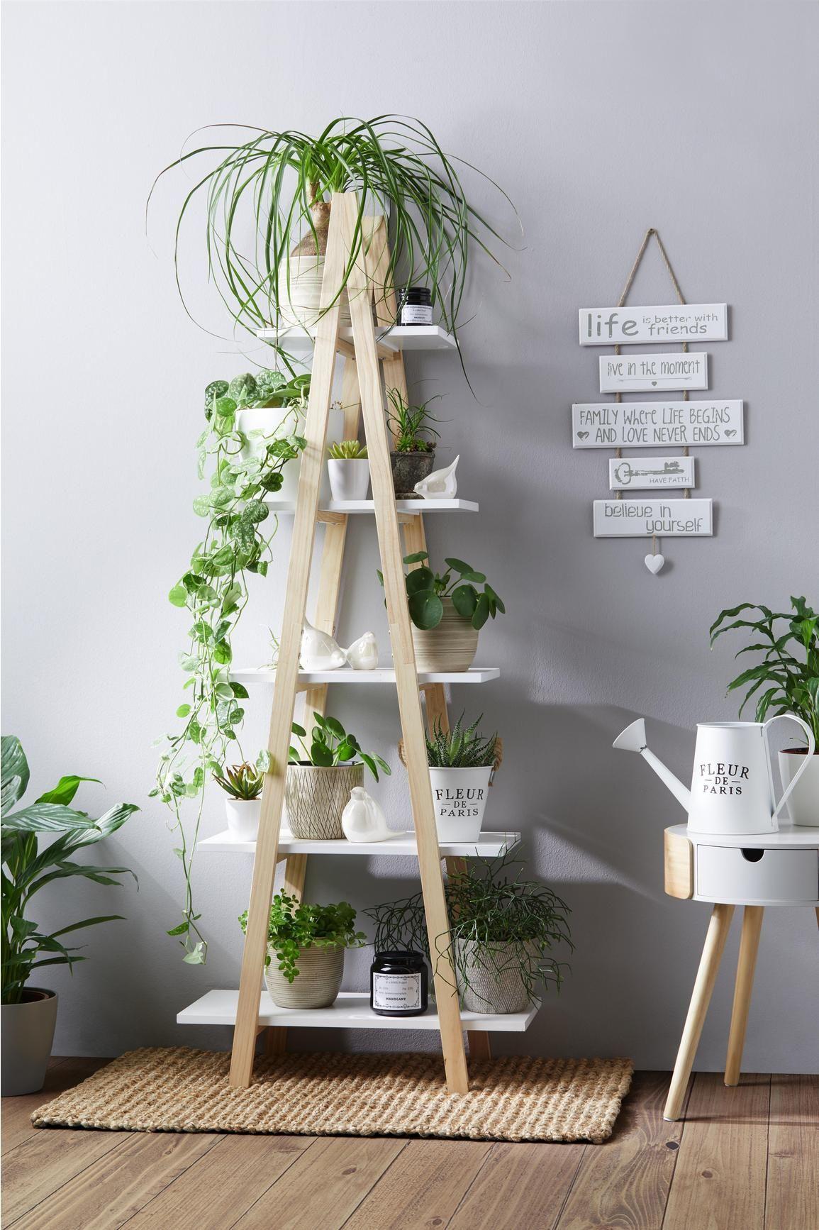 Regal Weiß/Kieferfarben online kaufen ➤ mömax  Regal weiss