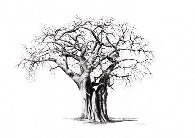 a single baobab tree large and intricate tree tattoos rh pinterest co uk baobab tree tattoo meaning boab tree tattoo