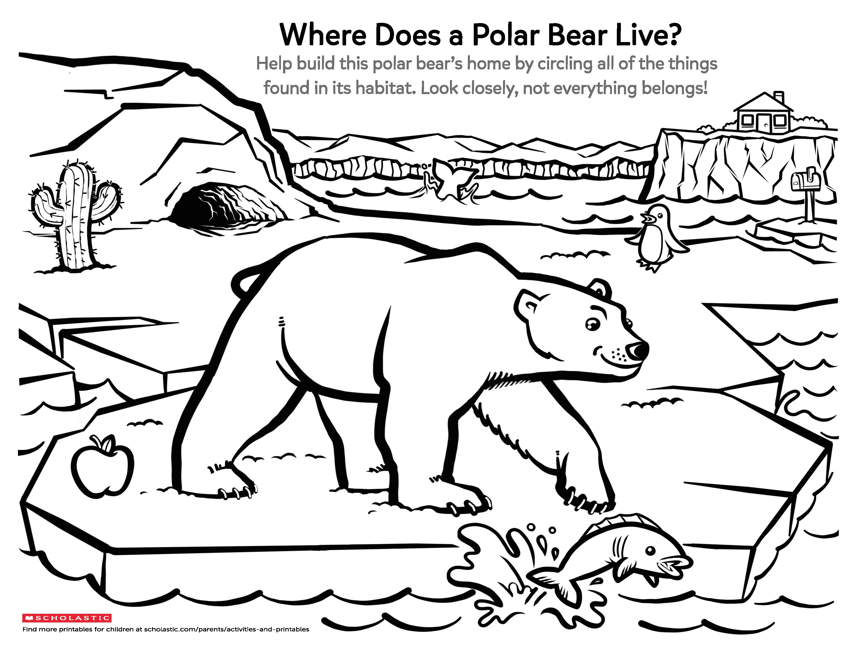 Help Your Little Explorer Learn About This Arctic Animal And Its Habitat With This Fun Pr Kindergarten Worksheets Arctic Animals Preschool Kids Math Worksheets [ 2550 x 3300 Pixel ]