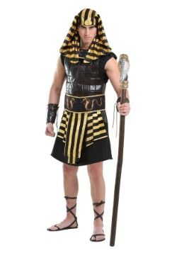 Plus size pharaoh adult costume happens. think