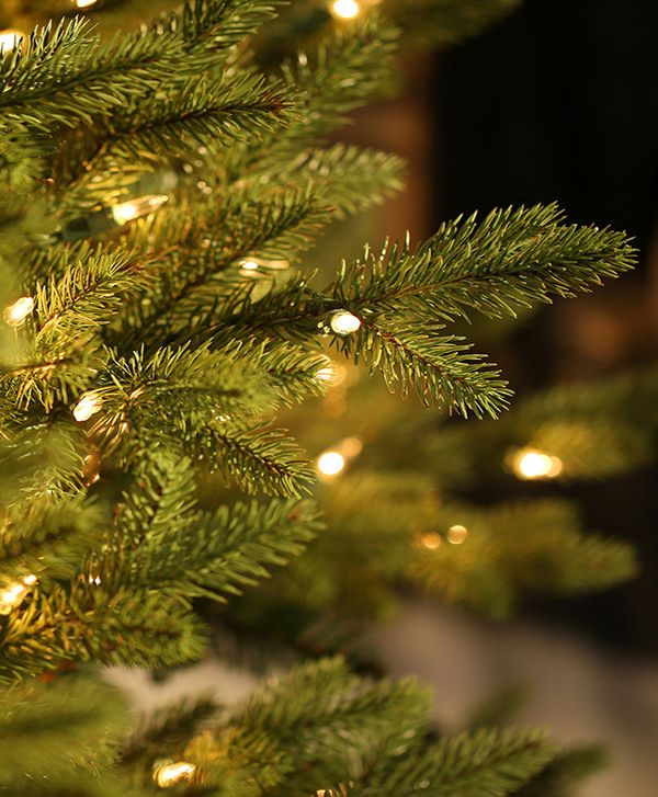 Fraser Fir Flip Christmas Tree   Tree Classics   Tree Classics ...