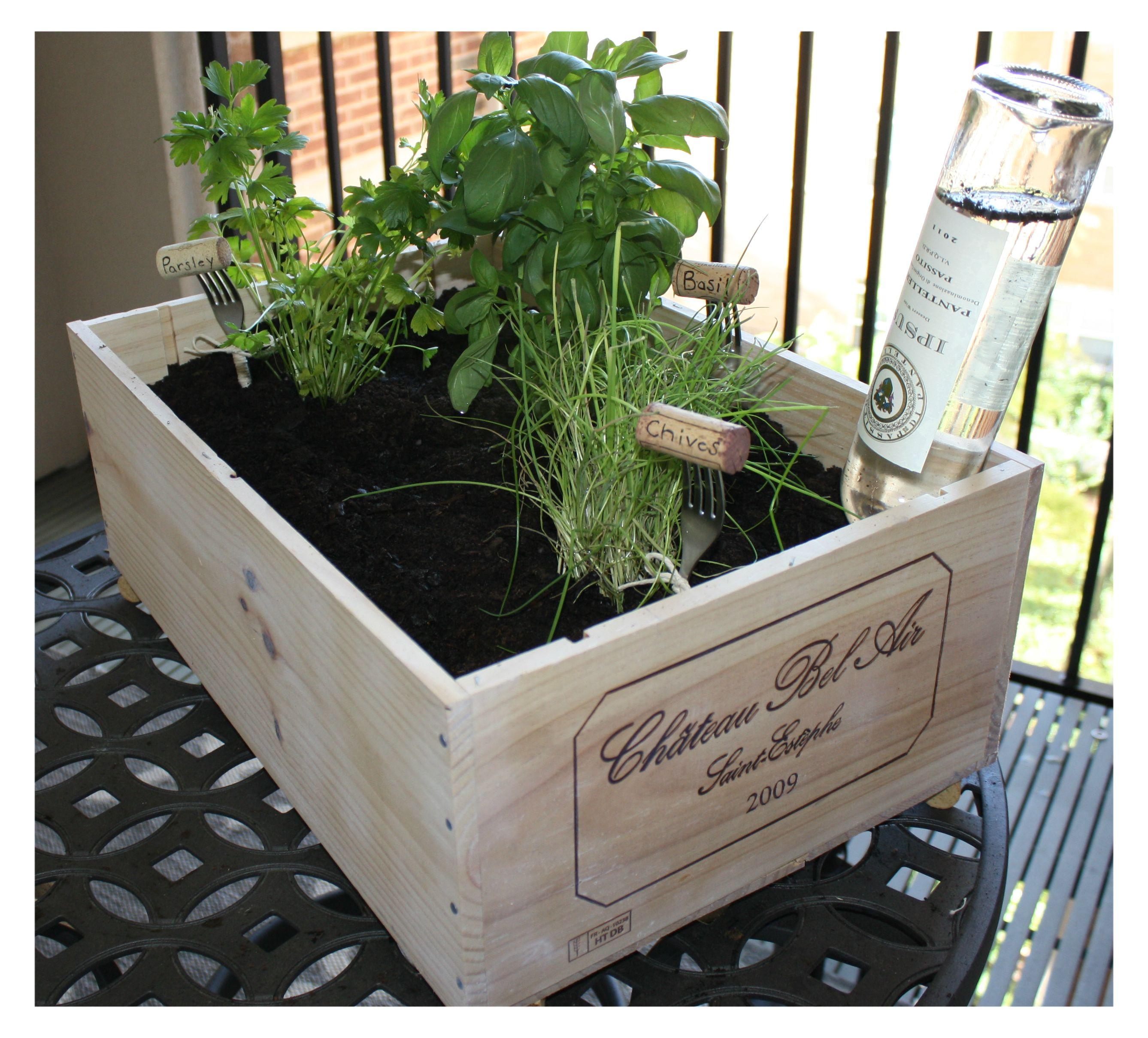 Diy Wine Box Herb Garden Http Capitolletters Net Wine 640 x 480