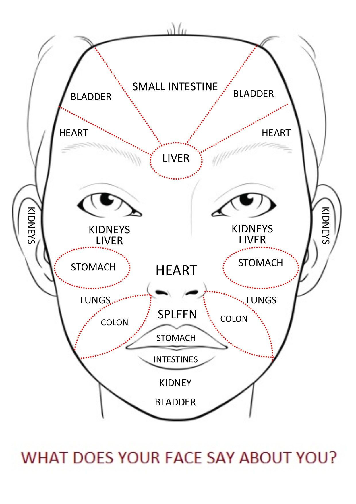 This Chinese Face Map Reveals What Your Body Fights With