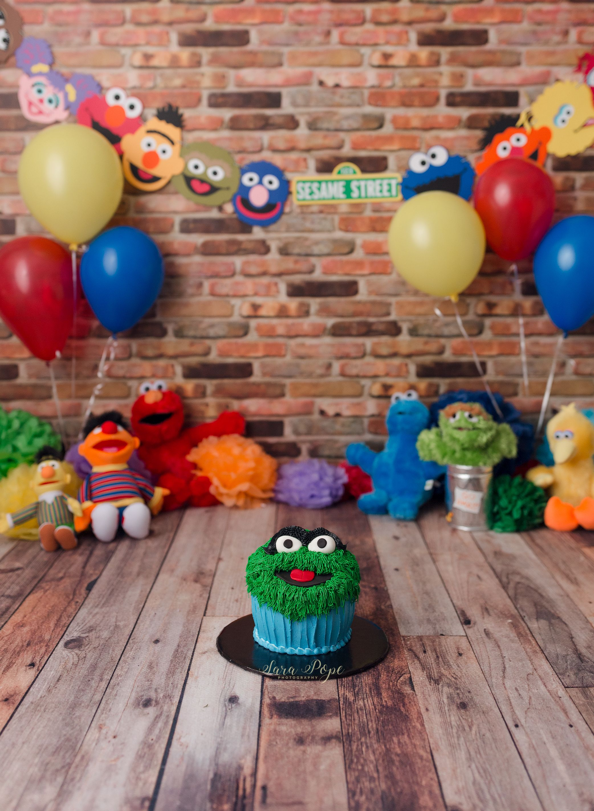 Sesame Street Cake Smash Session Sara Pope Photography Www