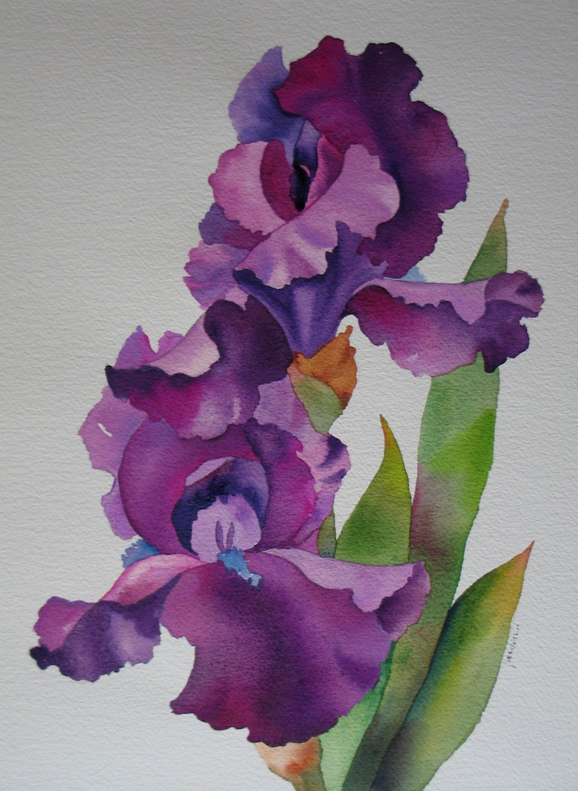 Nels everyday painting purple iris watercolor sold paintings art flowers izmirmasajfo