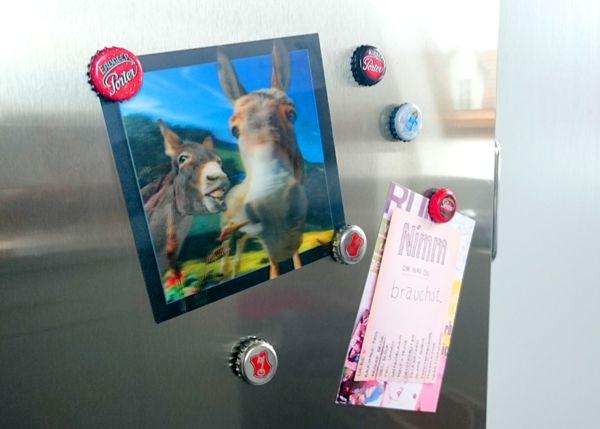 Magnete basteln - Magnete für den Kühlschrank selber machen Ob - lustige bilder selber machen