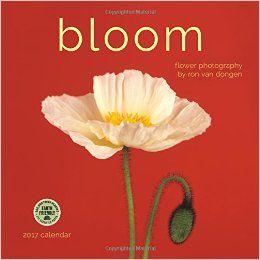 Bloom 2017 Wall Calendar: Flower Photography by Ron Van Dongen: Ron van Dongen, Amber Lotus Publishing: 9781631361289: Amazon.com: Books