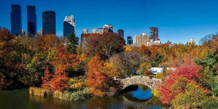 Central Park in Fall, New York City, Mid-Atlantic, USA, North America