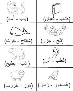 شيت مراجعة عربي لتأسيس كى جى Kg2 مع التدرب على نطق الكلمات بالفيديو Learning Arabic Arabic Kids Learn Arabic Language