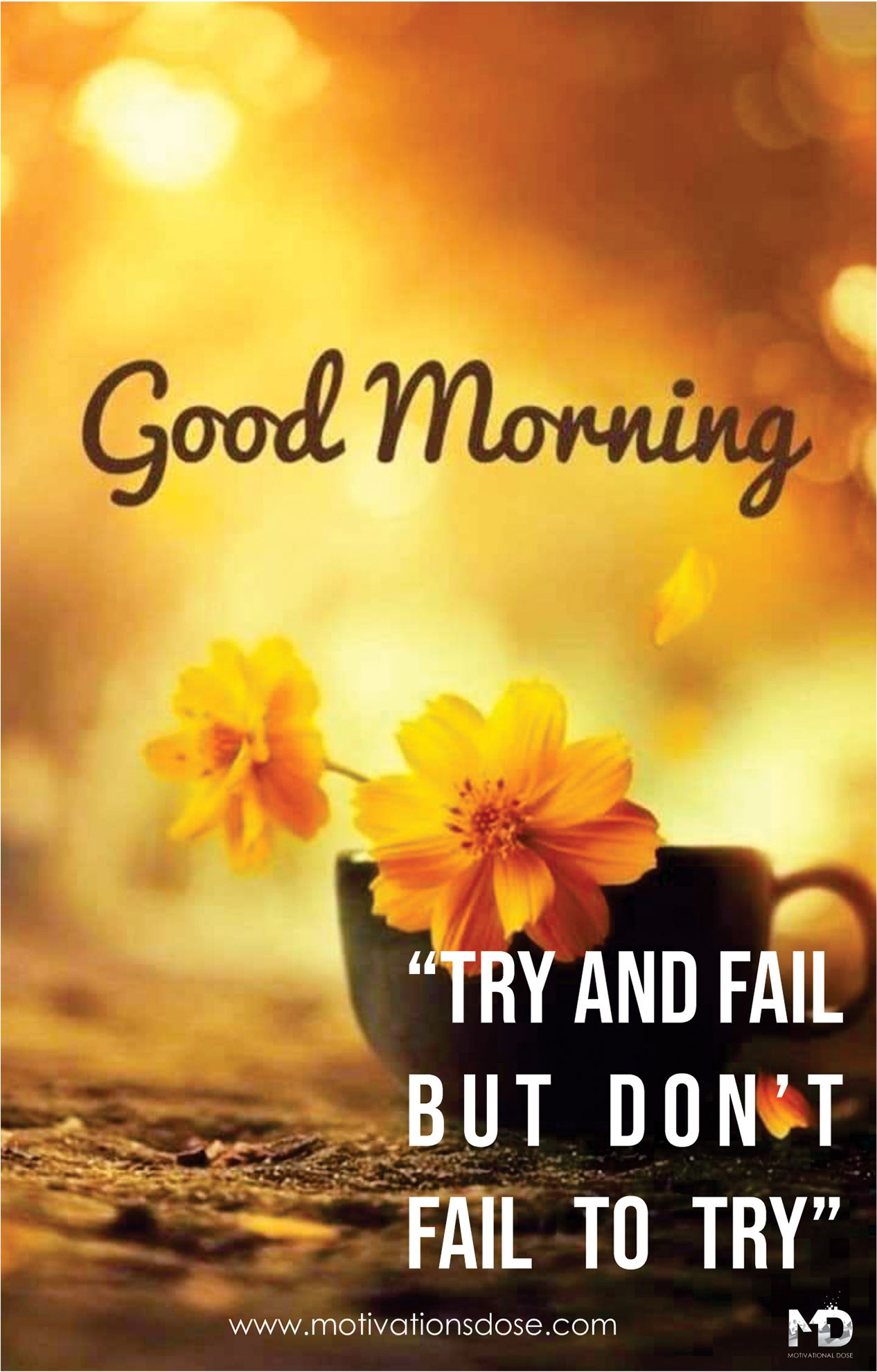 Top 10 Motivational Good Morning Quotes Morning Quotes Funny Motivational Good Morning Quotes Morning Quotes For Him