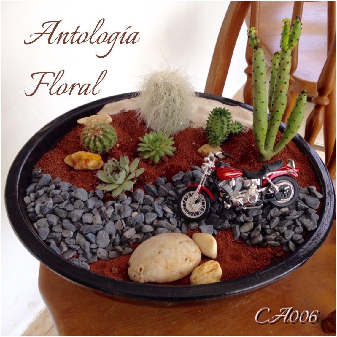 Arreglo de cactus en maceta de barro con tema de - Macetones de barro ...