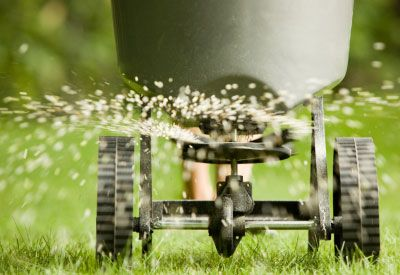 Traditional lawn chemicals not only put your family and pets at risk but endanger the world at large. That's something we all want to avoid.